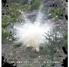 ZOMBOOM Exploding Targets